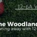 woodlands-running